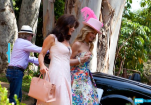 Lisa Vanderpump sporting one of her many Berkins.